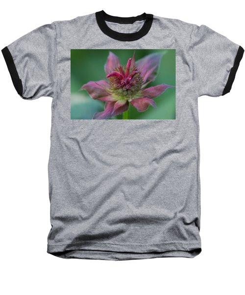 Early Spring Bee Balm Bud Baseball T-Shirt