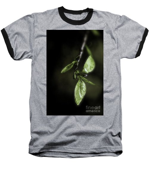Early Spring Leaves Baseball T-Shirt