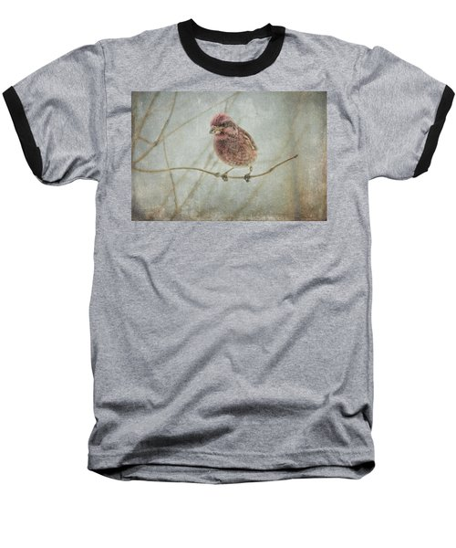 Early Spring Visitor Baseball T-Shirt
