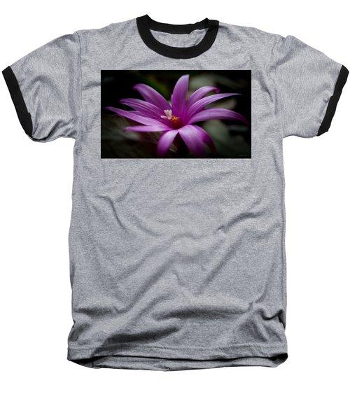 Easter Rose Baseball T-Shirt by Steven Milner
