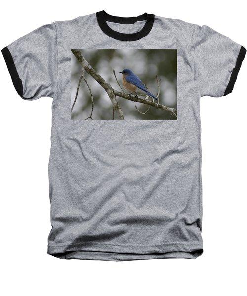 Eastern Bluebird Baseball T-Shirt