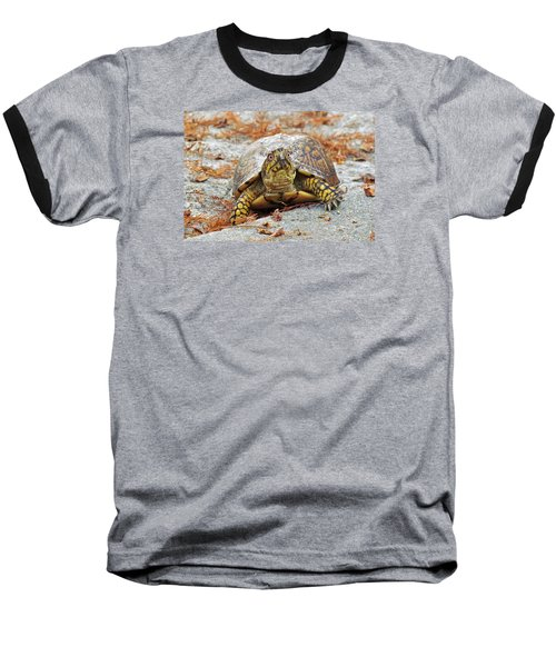 Baseball T-Shirt featuring the photograph Eastern Box Turtle by Cynthia Guinn