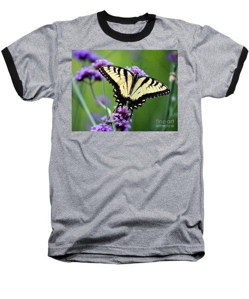 Eastern Tiger Swallowtail Butterfly 2014 Baseball T-Shirt