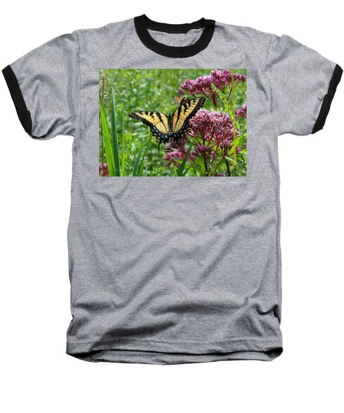 Eastern Tiger Swallowtail On Joe Pye Weed Baseball T-Shirt