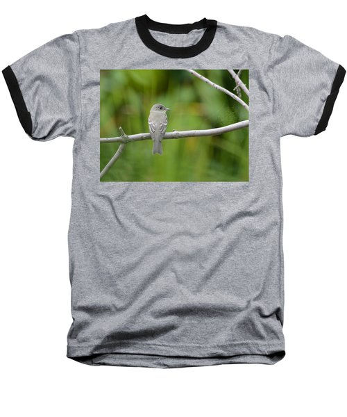 Eastern Wood Pewee Baseball T-Shirt