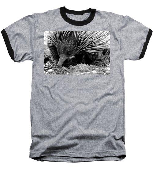 Echidna Baseball T-Shirt