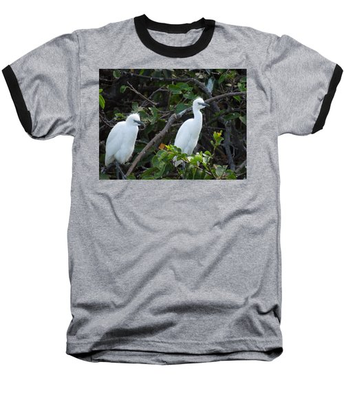 Egret Chicks Waiting To Be Fed Baseball T-Shirt by Ron Davidson