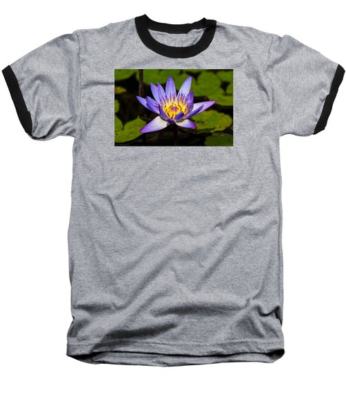 Egyptian Blue Water Lily  Baseball T-Shirt by Scott Carruthers