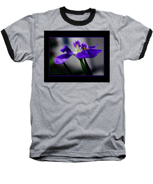 Elegant Iris With Black Border Baseball T-Shirt