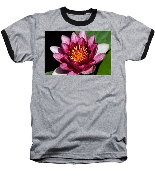 Elegant Lotus Water Lily Baseball T-Shirt