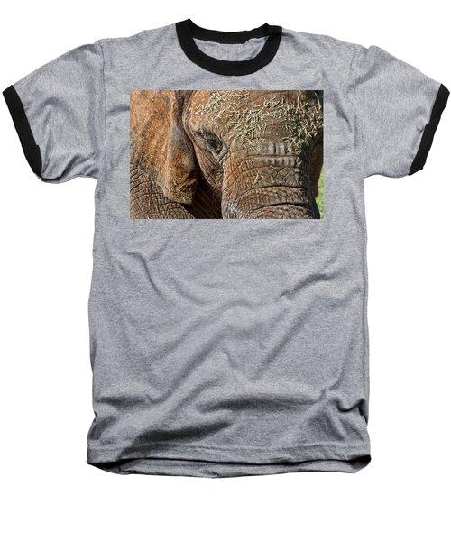 Elephant Never Forgets Baseball T-Shirt