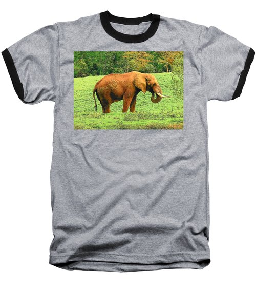 Baseball T-Shirt featuring the photograph Elephant by Rodney Lee Williams