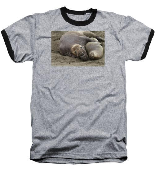 Elephant Seal Couple Baseball T-Shirt by Duncan Selby