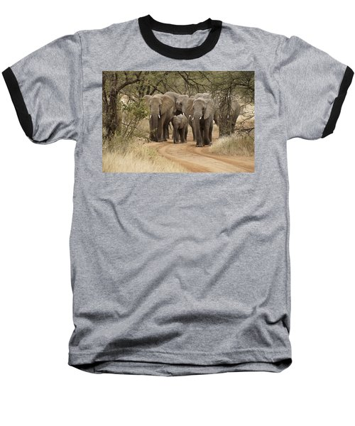 Elephants Have The Right Of Way Baseball T-Shirt