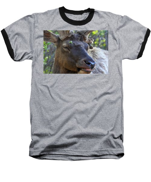 Elk Chuckle Baseball T-Shirt