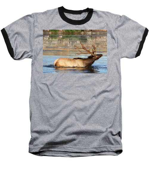 Elk Cooling Down In Lake Baseball T-Shirt
