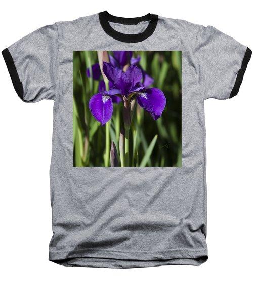 Eloquent Iris Baseball T-Shirt