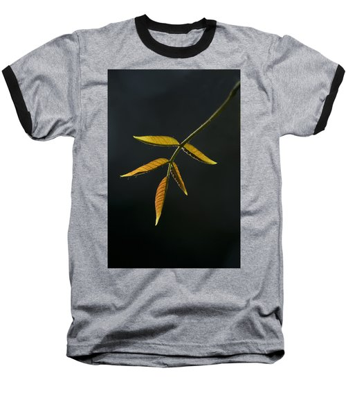 Emergence Baseball T-Shirt