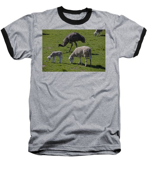 Emu And Sheep Baseball T-Shirt