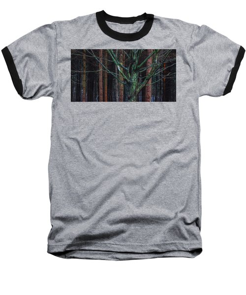Baseball T-Shirt featuring the photograph Enchanted Forest by Davorin Mance