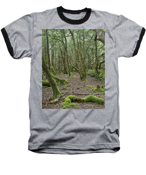 Baseball T-Shirt featuring the photograph Enchanted Forest by Hugh Smith