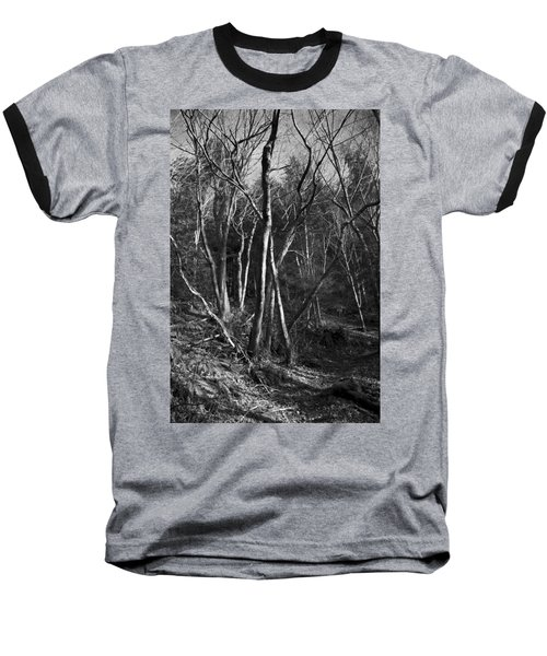 Baseball T-Shirt featuring the photograph Enchanted Forest by Yulia Kazansky