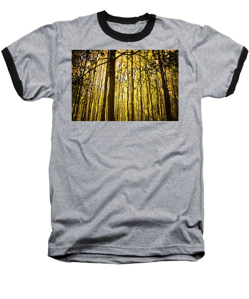Enchanted Woods Baseball T-Shirt by Sara Frank
