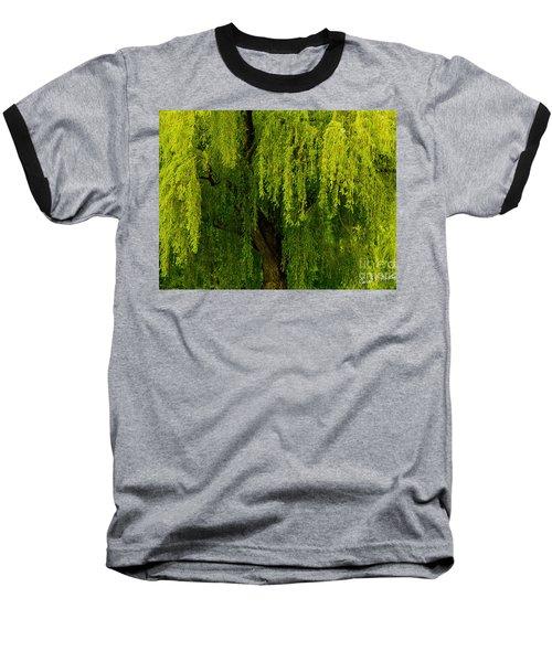 Enchanting Weeping Willow Tree  Baseball T-Shirt by Carol F Austin