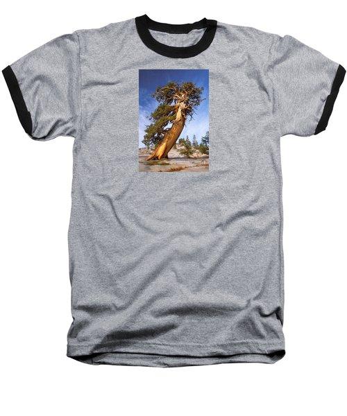 Endurance Baseball T-Shirt by Alice Cahill