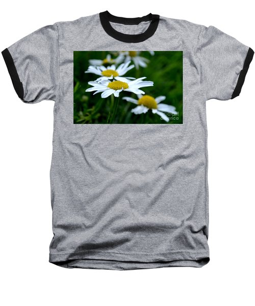 English Daisies Baseball T-Shirt
