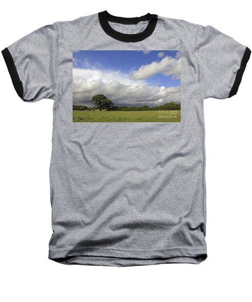 English Oak Under Stormy Skies Baseball T-Shirt