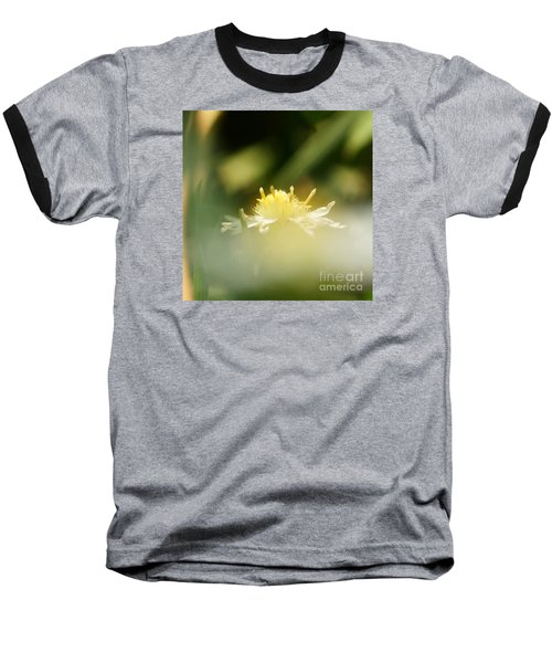 Baseball T-Shirt featuring the photograph Enwrapped In Misty Shroud by Linda Shafer