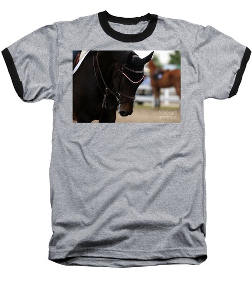 Equine Concentration Baseball T-Shirt