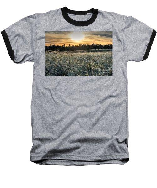 Evening Grasses In The Black Hills Baseball T-Shirt