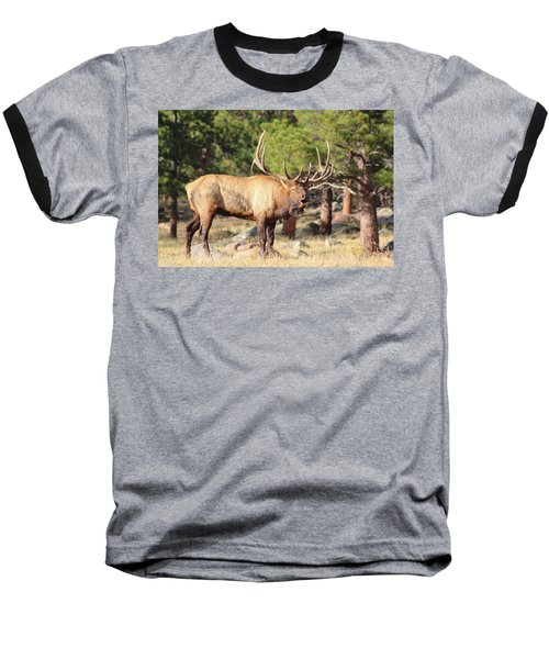 Evening Roundup Baseball T-Shirt