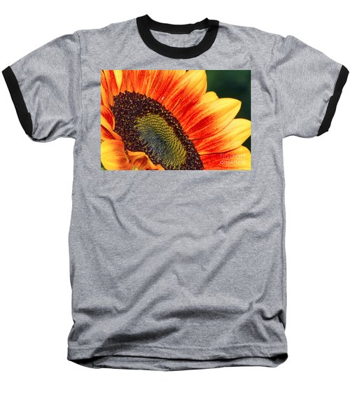 Evening Sun Sunflower Baseball T-Shirt