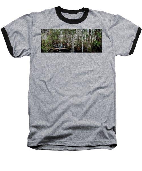 Everglades Swamp-1 Baseball T-Shirt