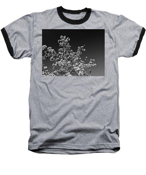 Evergreen Pear Bw Baseball T-Shirt