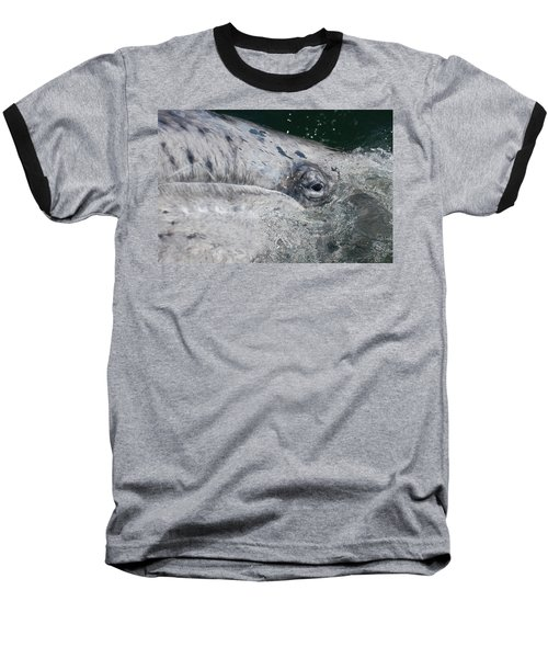 Baseball T-Shirt featuring the photograph Eye Of A Young Gray Whale by Don Schwartz