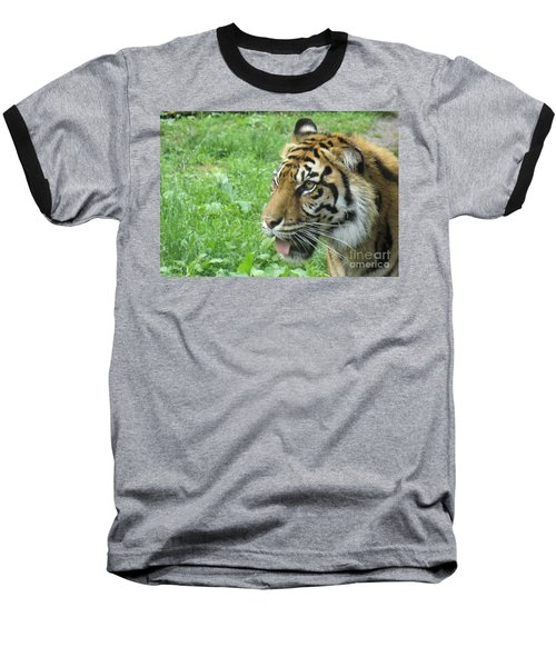 Baseball T-Shirt featuring the photograph Eye Of The Tiger by Lingfai Leung