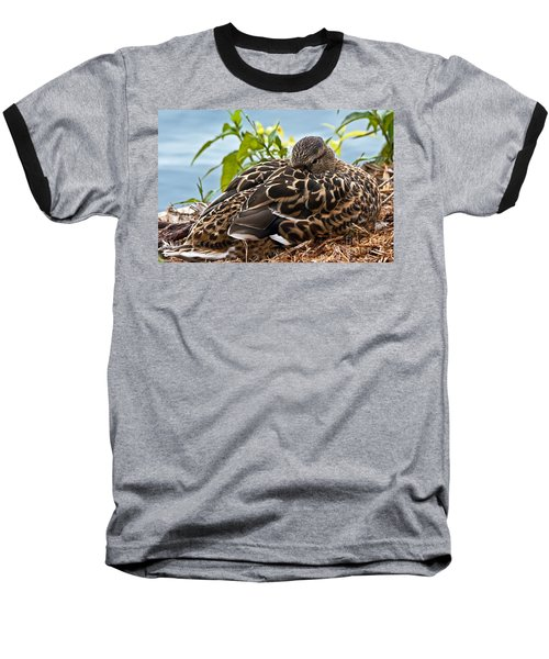 Baseball T-Shirt featuring the photograph Eye Watching You by Kate Brown