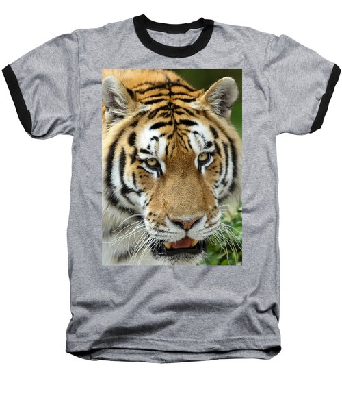 Eyes Of The Tiger Baseball T-Shirt by John Haldane
