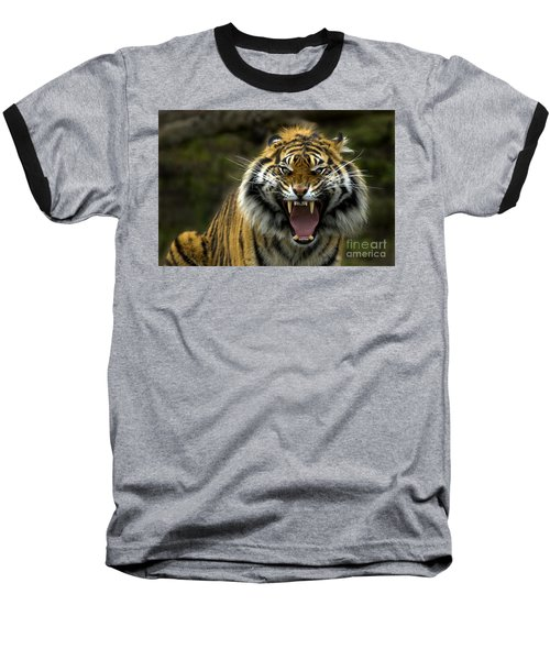 Eyes Of The Tiger Baseball T-Shirt by Mike  Dawson