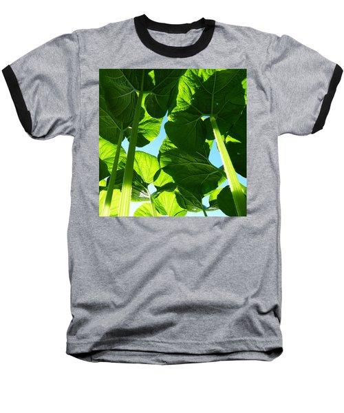 Faerie World Baseball T-Shirt