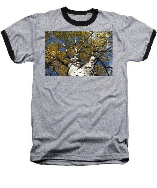 Fall Aspen Baseball T-Shirt