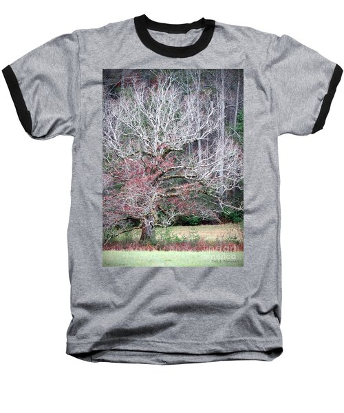 Fall At Cades Cove Baseball T-Shirt