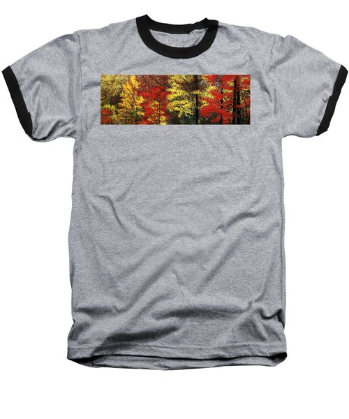 Fall Canopy Baseball T-Shirt