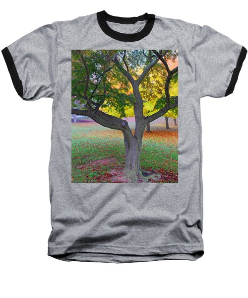 Baseball T-Shirt featuring the photograph Fall Color by Lisa Phillips