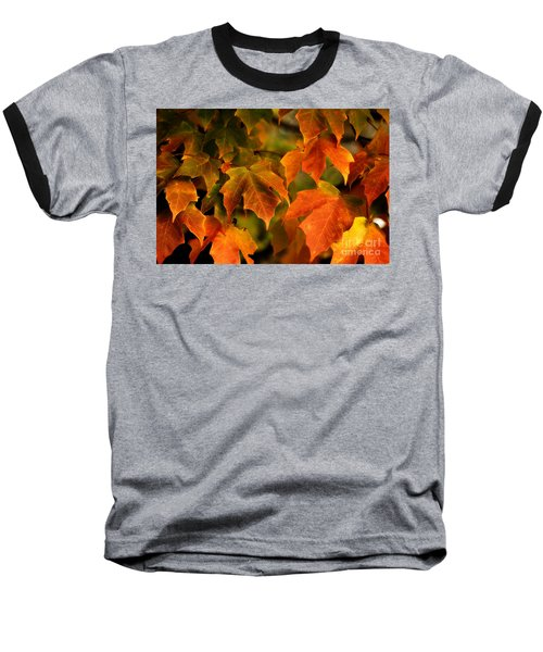 Fall Color Baseball T-Shirt by Melissa Petrey