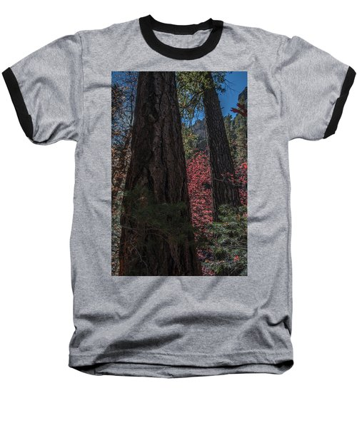 West Fork Perspective Baseball T-Shirt